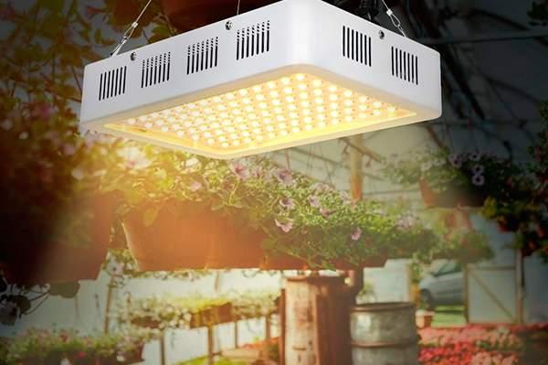 Mejores Luces Led para Plantas de Interior